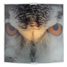 Бра Markslojd Owl 105242
